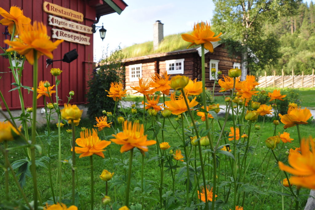 Rondane River Lodge garden