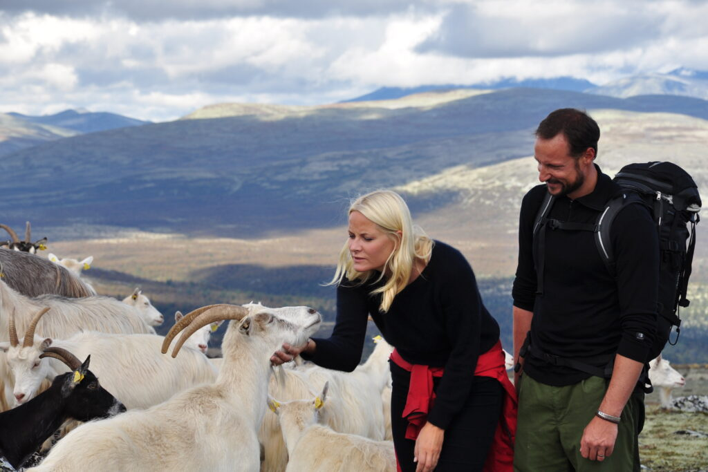 Rondane River Lodge goat farm visit