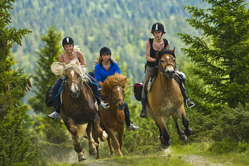 Rondane River Lodge horse riding